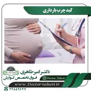 کبد چرب بارداری